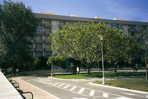 Apartamentos Gaviotas