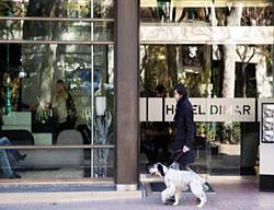 Hotel Atriam Dimar