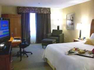 hotel hilton garden inn las colinas - Hilton Garden Inn Las Colinas