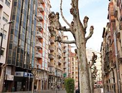 Hotel Husa Bracos