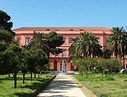 Hotel Miglio D'oro Park
